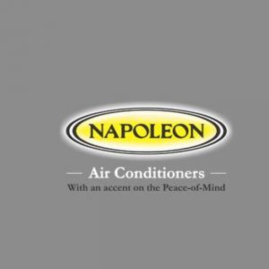 Napoleon Remotes